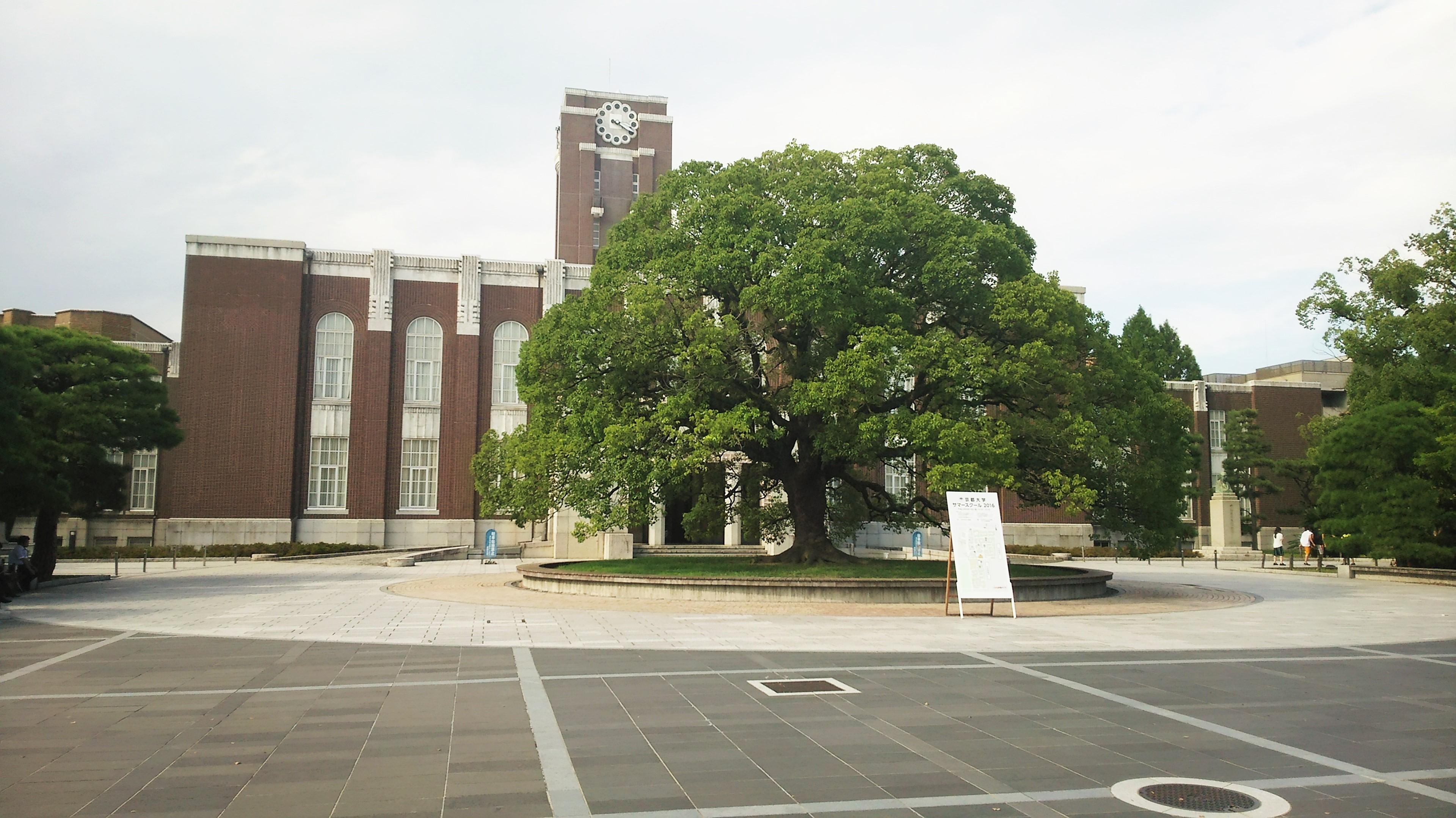 田村恵子 京都大学
